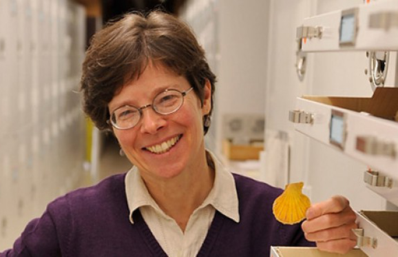 Dr Susan Kidwell in a lab setting, holding a seashell, smiling for the camera